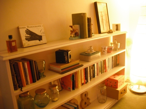 Build Bookcase For Happiness